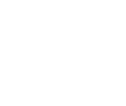 Govern Transport logo